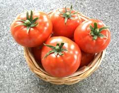 いしやのトマト組合